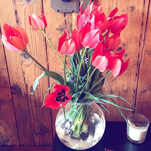 Domenica di fiori. ?